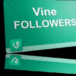 buy vine followers, buy vine likes, purchase vine followers