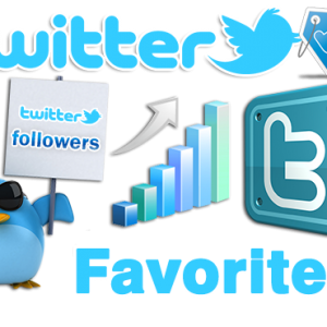 buy real twitter favorites, get more favorites on twitter, buy twitter favorites